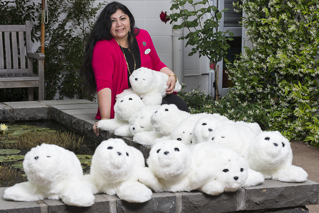 Therapeutic robotic seals (Paro) win innovation award for The Selwyn Foundation